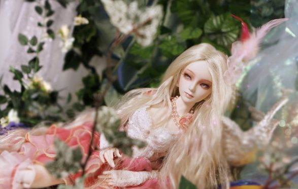 tulip bjd collectible doll