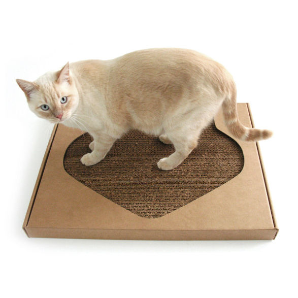 kittypod pawpaw scratcher for cats