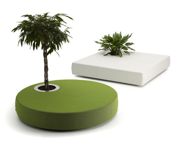 green islands sofa and plant