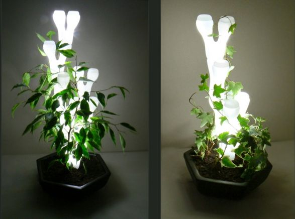 ivy light lamp and plant